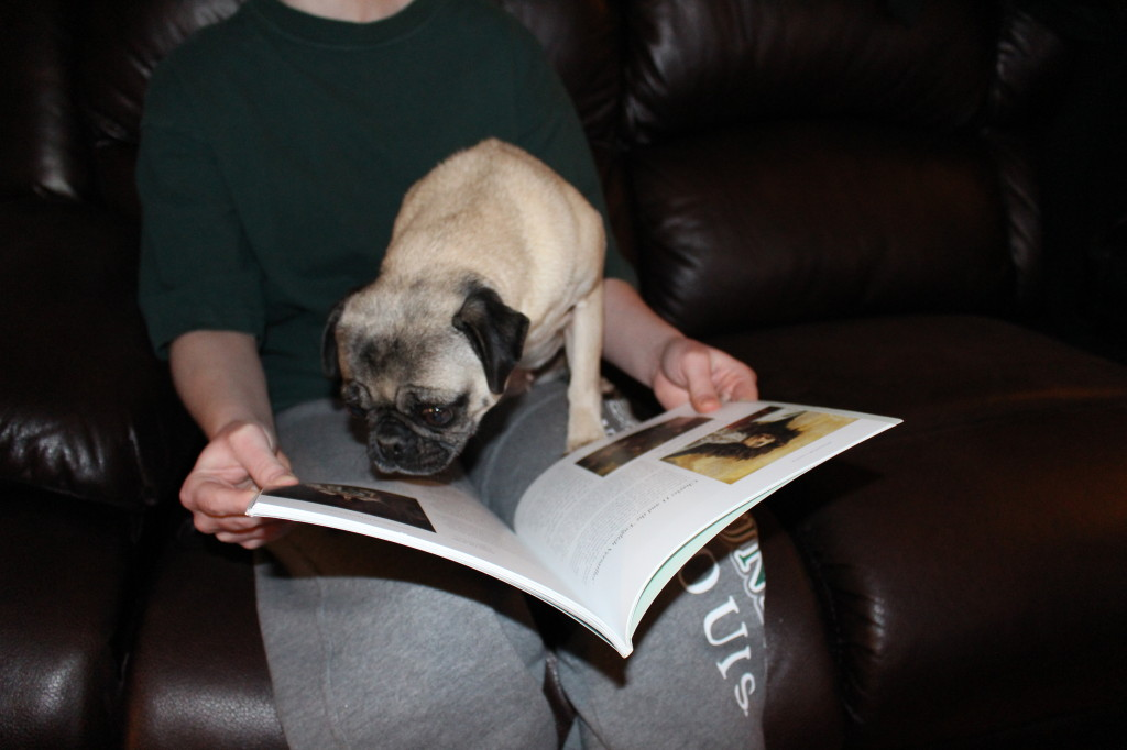 Reading Pug 2