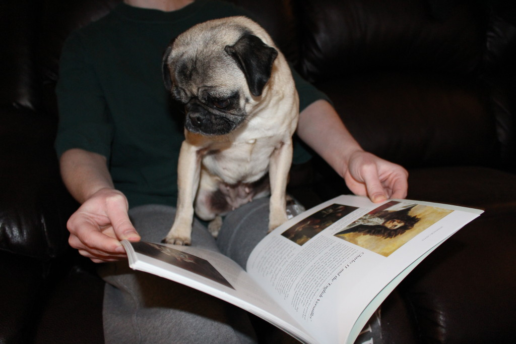 Reading Pug 3