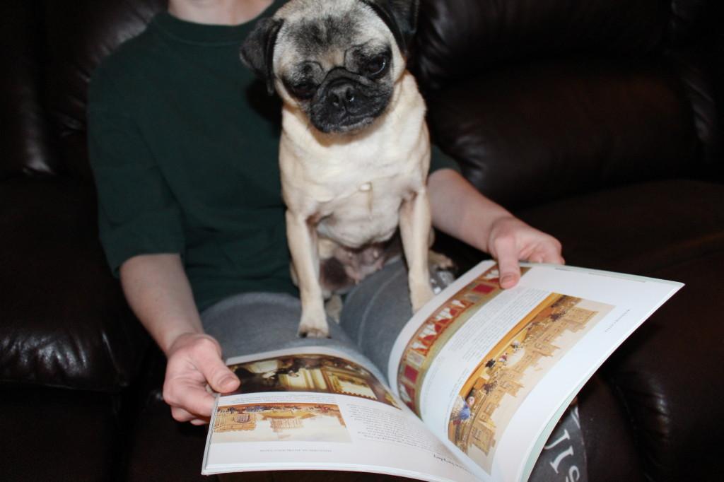 Reading Pug 4