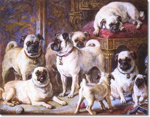 http://aboutpug.com/wp-content/uploads/2014/03/Queen-Victorias-Pugs.jpg