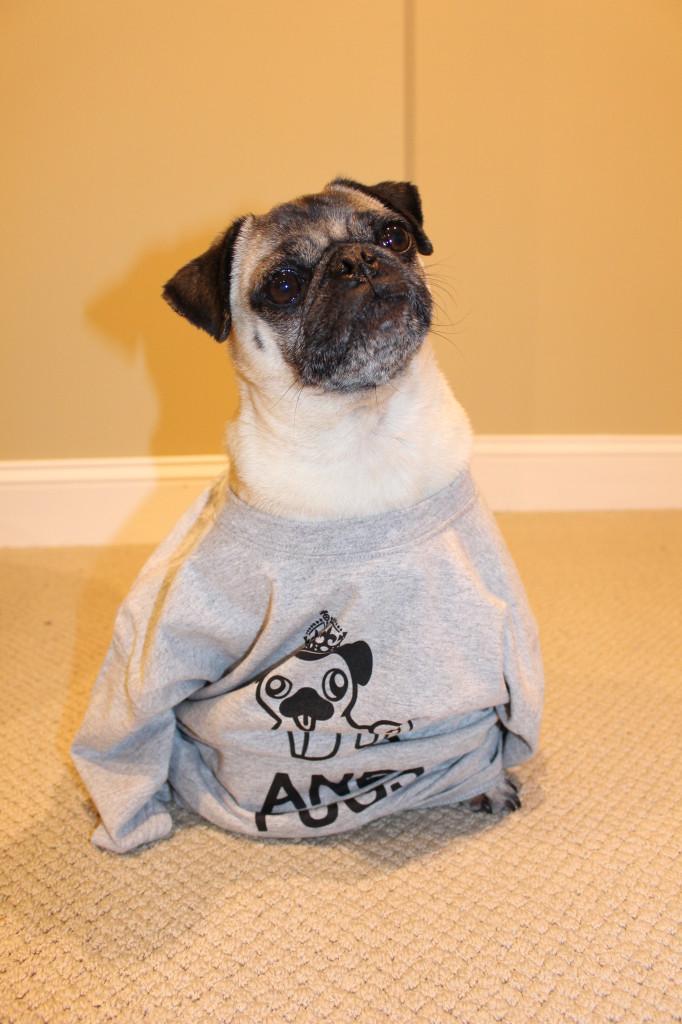 Pug Shirt 3