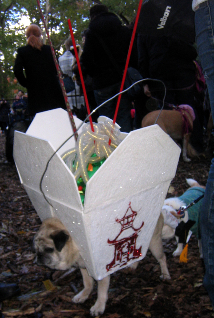 chinese takeout pug halloween costume