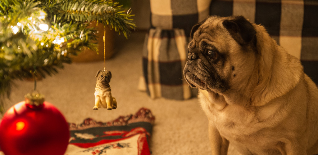 christmas ornament cute pug